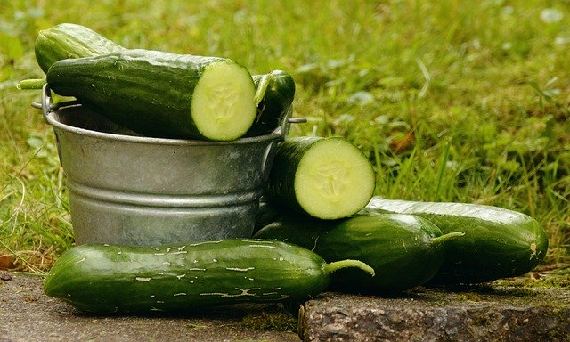 Did you know Cucumber can do this too! |DIY